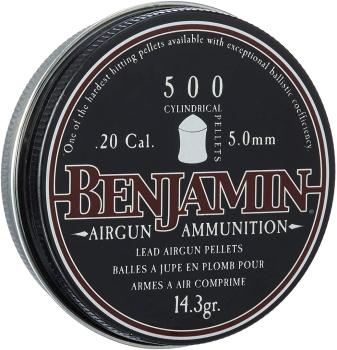 Benjamin P50 .20-Calbier Cylindrical Pellet, 500-Count (BN-P50)